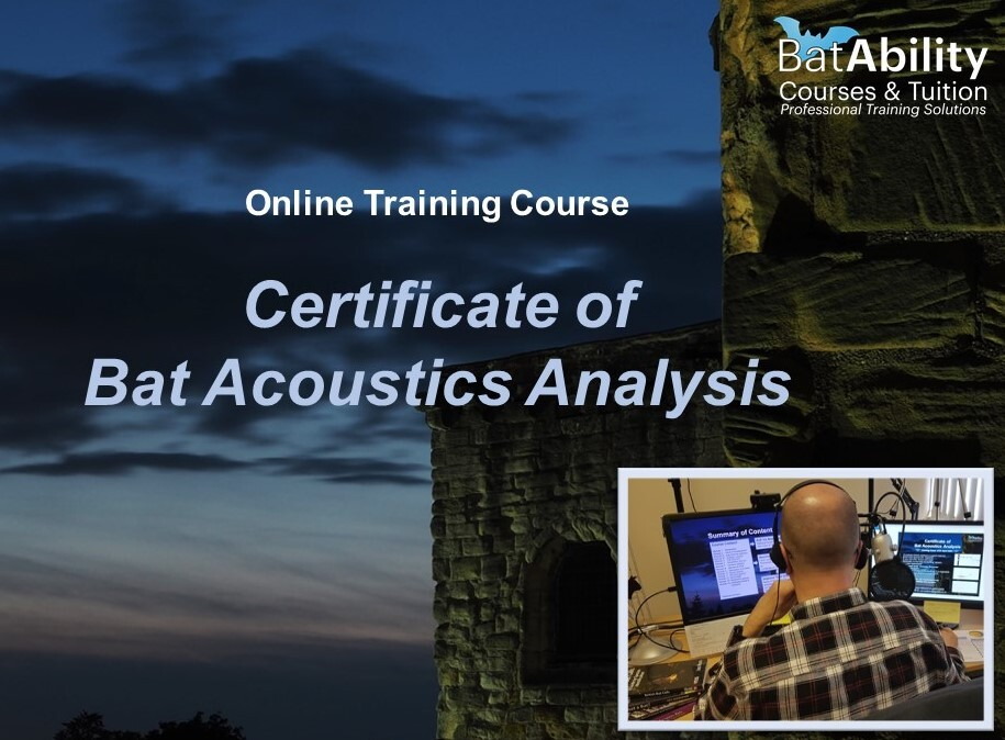 Certificate of Bat Acoustics Analysis - online, available to start now