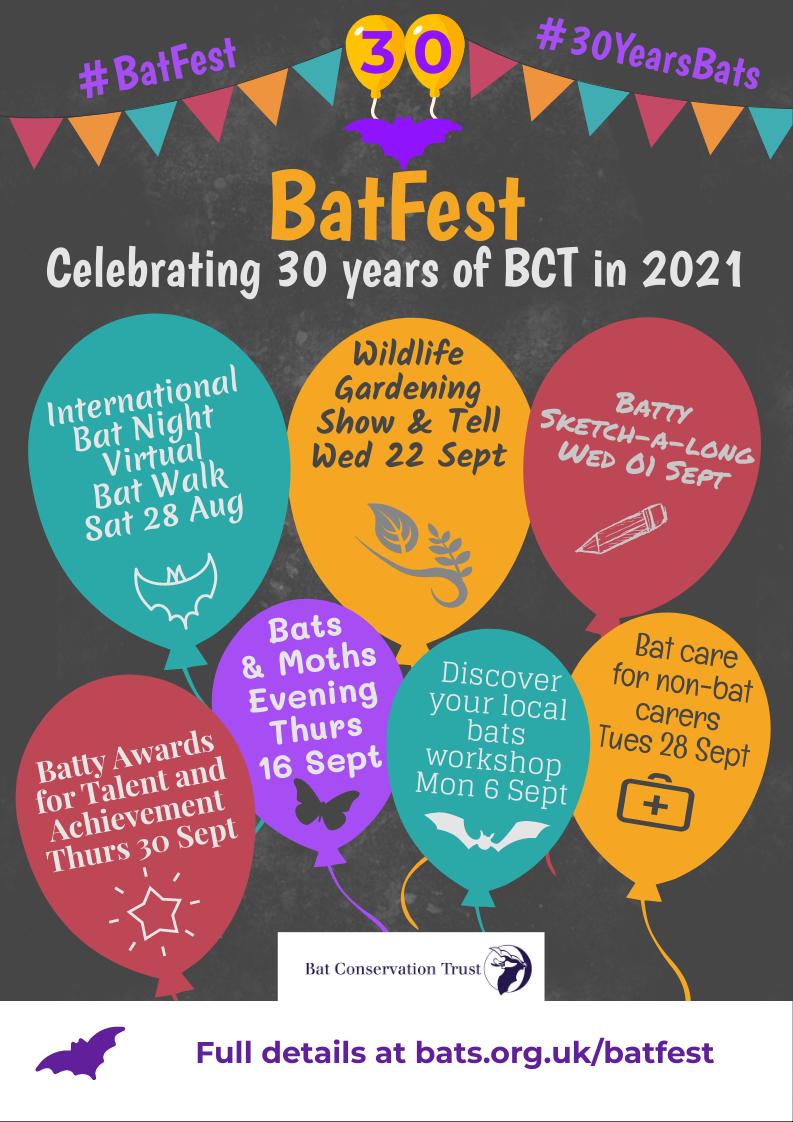 BatFest