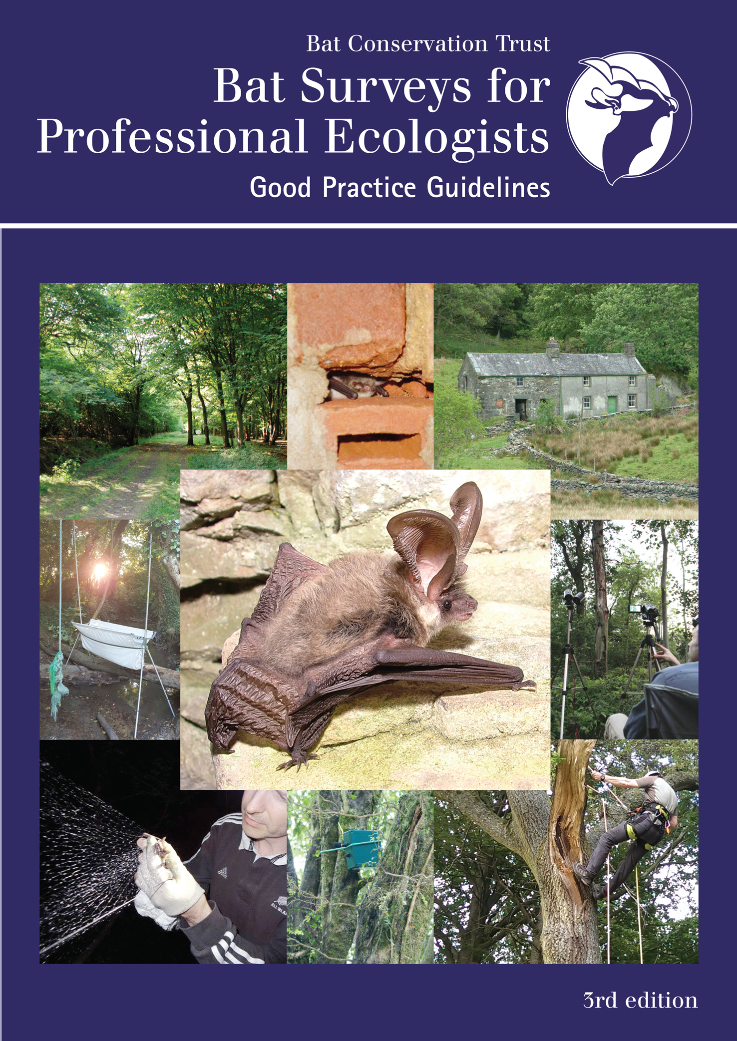 Bat Surveys for Professional Ecologists: Good Practice Guidelines 3rd edition