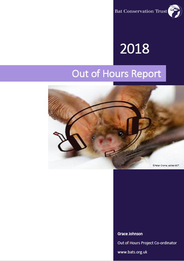 Volunteer Bat Care Helpline