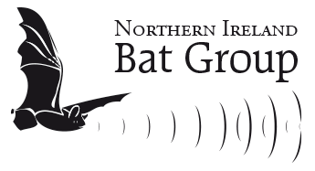 Bat monitoring in Northern Ireland