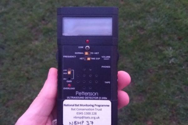 Time expansion bat detectors
