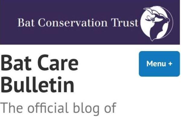 Bat Care Bulletin