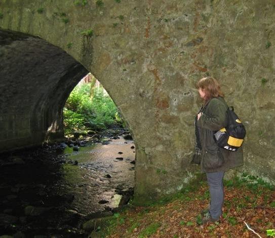 Waterway Survey