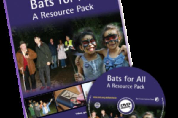 Count Bat Project
