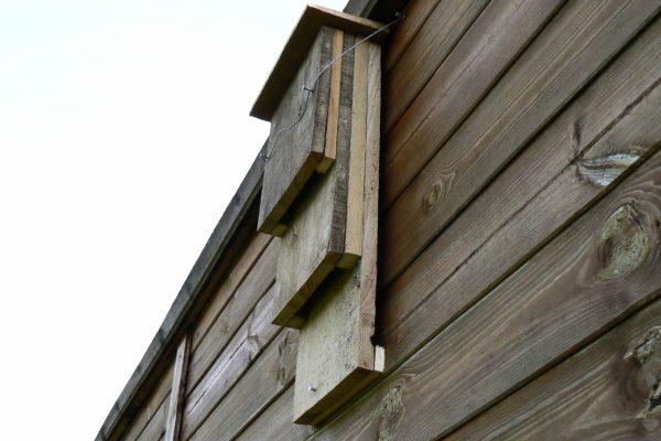 Wooden bat boxes