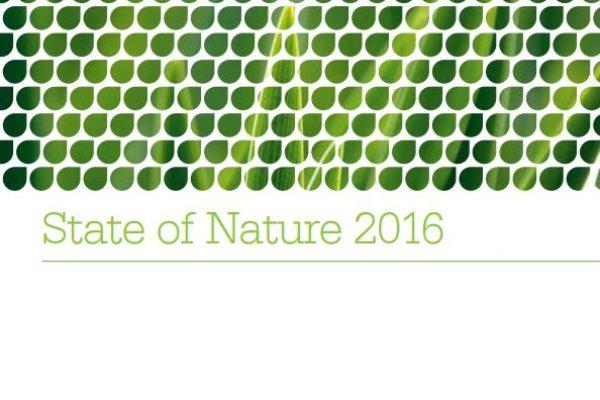 Biodiversity policy & advocacy