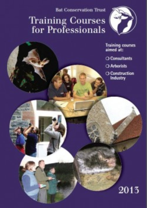 2013 Professional Training Courses