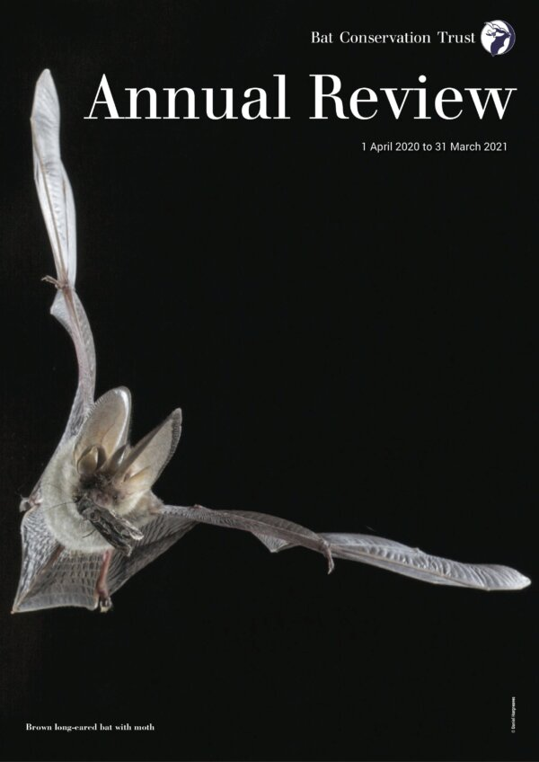 BCT ANNUAL REVIEW PUBLISHED
