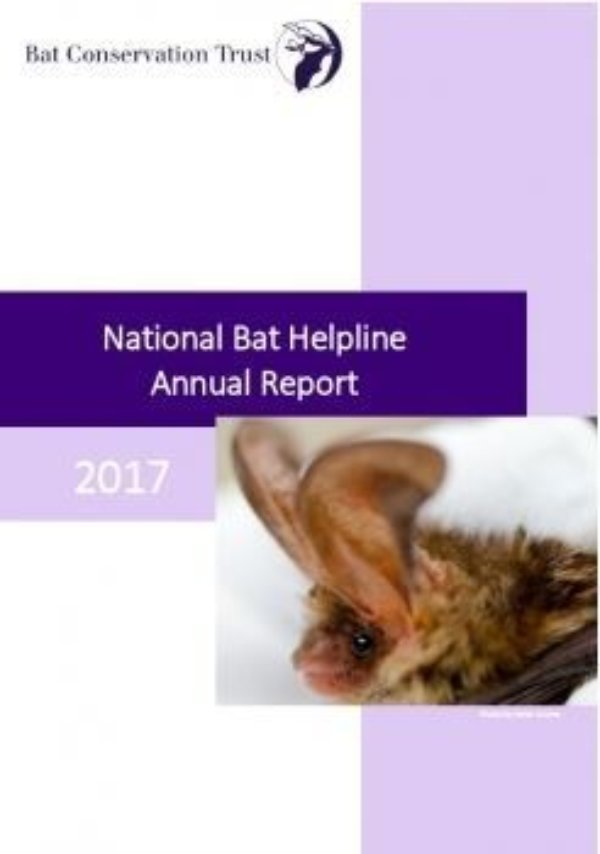National Bat Helpline report 2017 released