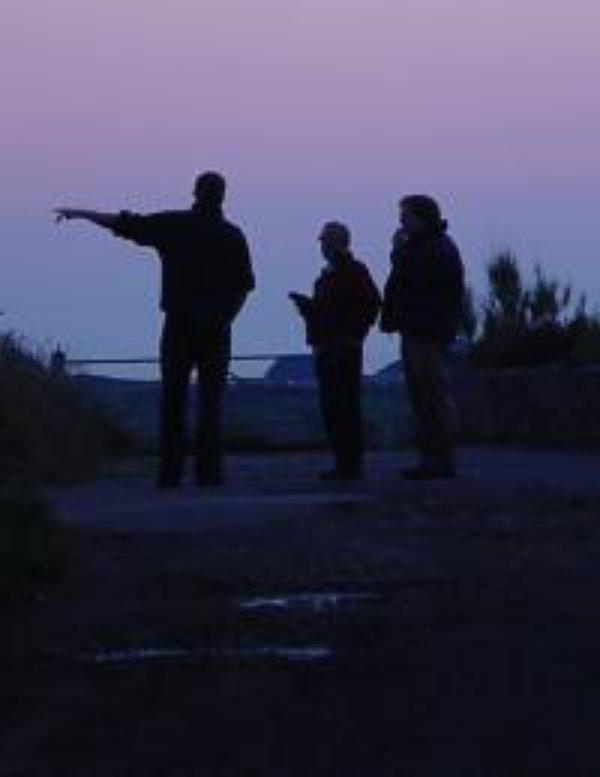 Sunrise-Sunset Survey - Help us count bats!