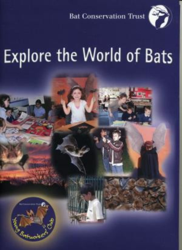 Explore the world of bats with BCT's new learning and activity pack!