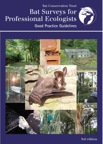 Bat Surveys for Professional Ecologists: Good Practice Guidelines (3rd edition)