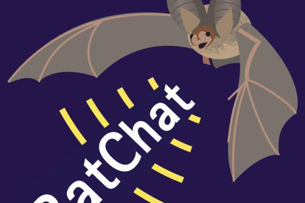 BatChat - The Bat Conservation Trust Podcast