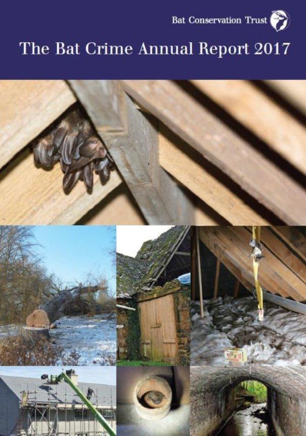 Bat Crime Annual Report 2017 released